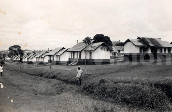 agurustate back then