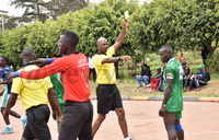 Handball teams exhibit a high level of indiscipline