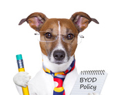 byodog-policy-copy