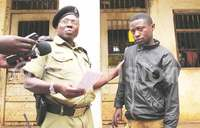 FDC youth mobiliser held over theft