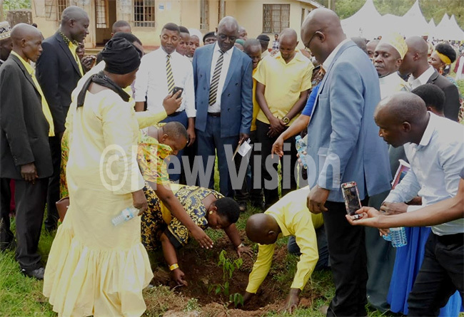 ustine asule umumba planting a tree after the launch of the alungu  members  hoto by ohnson seruwu