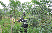 Wakiso in wildlife conservation campaign