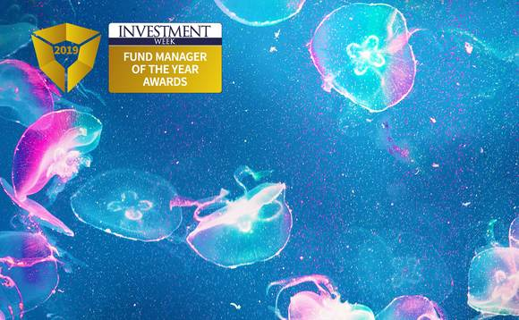 Fund Manager of the Year Awards 2019