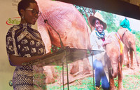 Lupita Nyong'o joins fight to save Africa's elephants
