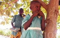 UPE 17 years later: Mangoes for lunch and mango tree for classroom