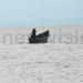 NRM village boss dies on fishing expedition