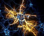 motor-neurone-disease