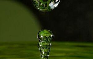 greenhope-320x518
