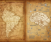 neuromarketing-latam