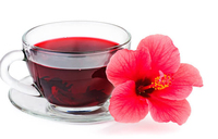 Is hibiscus safe during pregnancy?