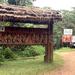 Climate change threatens Bwindi National Park: UN