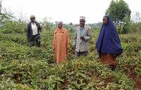Nabukeera fights malnutrition in her community