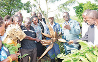 I rejected a SH5b offer for my farm