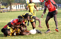 Betway Kobs face Bufalloes test