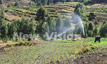 Irrigation 350x210