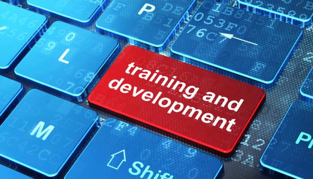 trainingdevelopment100579801orig