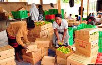 URA rolls back taxes to stimulate the economy