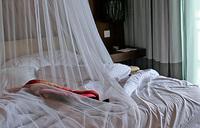 Strange malaria-like disease hits Uganda
