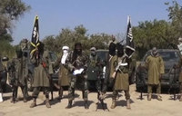 Niger says 31 Boko Haram fighters surrender