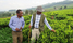 Tea suppliers warned against fake claims