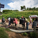 Ebola: Ugandan border town on high alert
