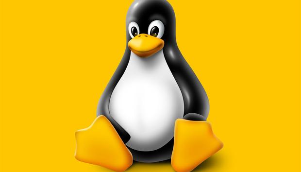 linuxtux100360806orig