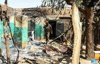 UN sends team to probe Mali massacre