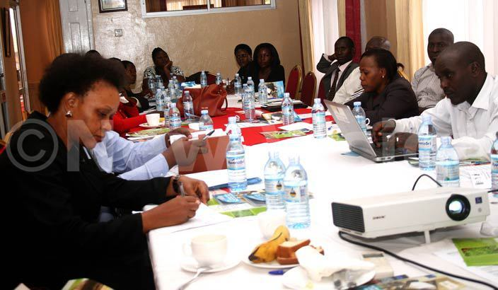ome of the stakeholders who attended the advocacy on child domestic workers at ureka hotel tinda hoto by yet kwera