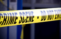 70-year old woman chopped to death
