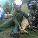 UWA translocating 150 Kobs to Kidepo