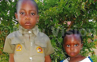 Two children poisoned