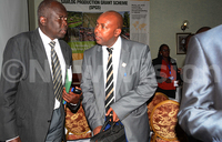 FAO steps in to save Bugoma forest
