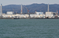 Fukushima clean-up reduces radiation levels, but not all
