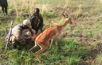 Animals that gave Kampala a name moved to Pian Upe