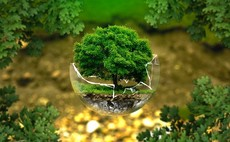 KBIGI sees family office interest upturn as ESG continues to soar