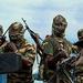 Suicide bomber kills three in NE Nigeria: militia
