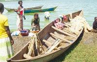 One latrine for thousands in Buvuma