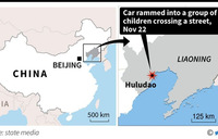Five dead, 19 hurt as car rams into children in China