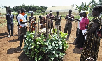 Farmers learnt how to set up a tower garden to grow vegetables and the type of vegetables that can grow on the tower 350x210
