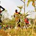 Plenty of hope for Ugandan sport in 2016