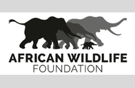 Notice from African Wildlife Foundation