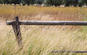 african-fence