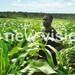 Uganda exports to hit sh31 trillion by 2017