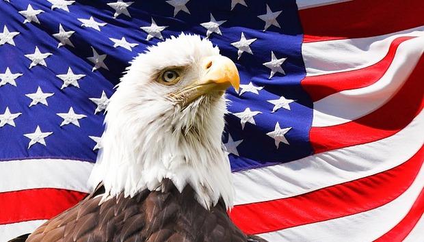 eagle-219679-640
