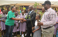 Leaders told to embrace tree planting