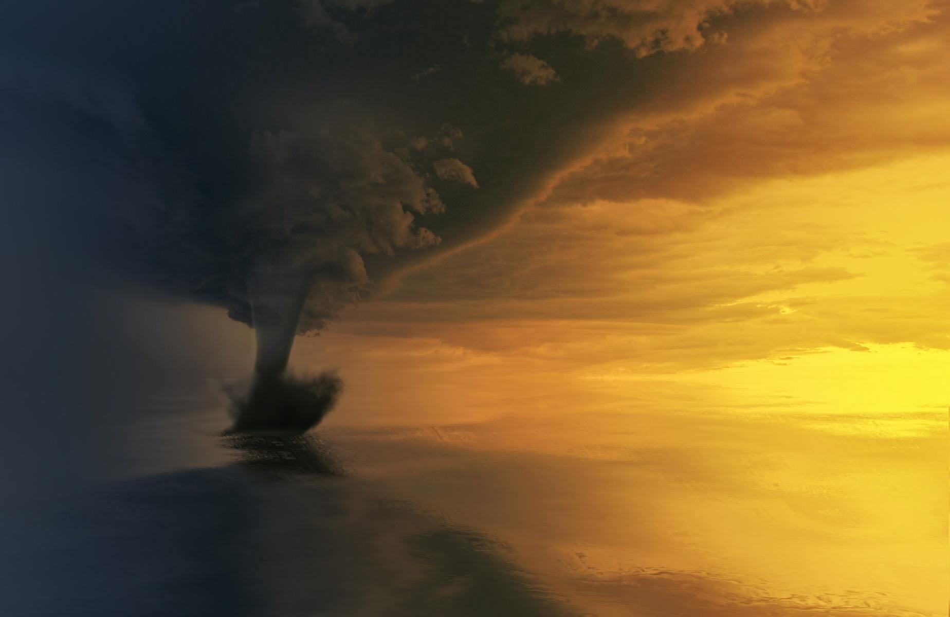 Jane Rimmer: From inside the tornado to portmanteau career