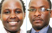 Make Uganda Clean project: The consultative panel