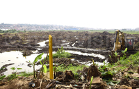 Investor clears Bugolobi wetland for warehouse