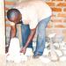 Backyard Farming: I am proud to rear chicken behind my house - Isabirye