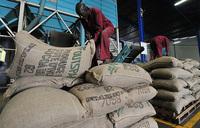 Ivory Coast raises minimum wage by 60 percent